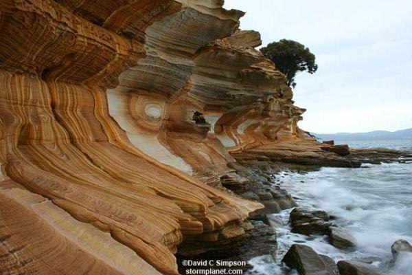 maria_island tasmania