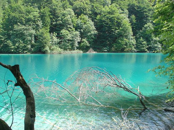 800px-Plitvice_Lakes_National_Park_-_Plitvička_jezera_(July_2008)
