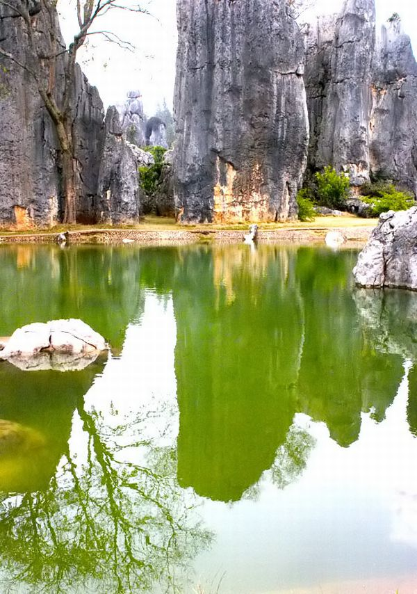 stone forest_china