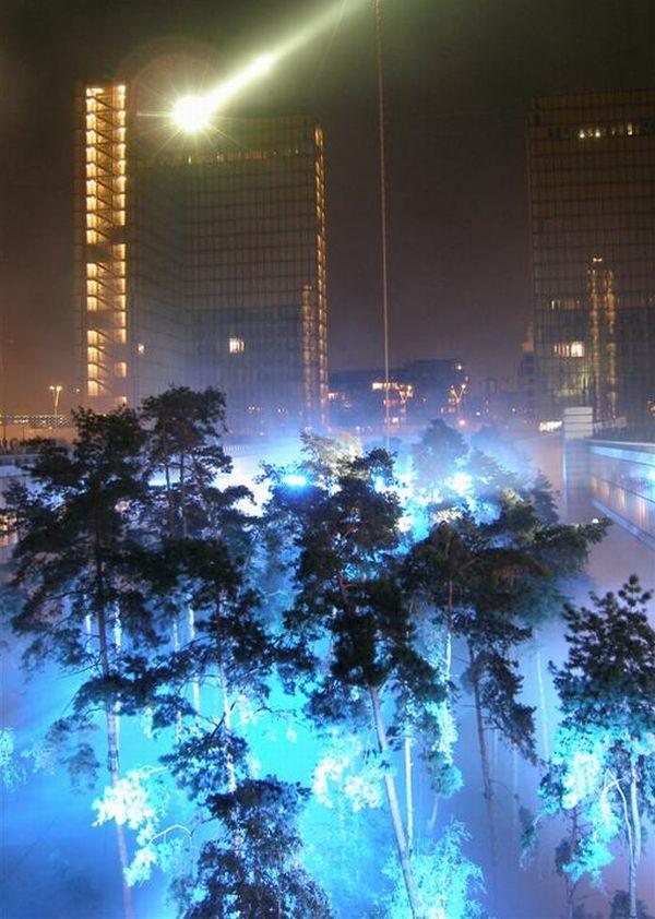 light _ trees