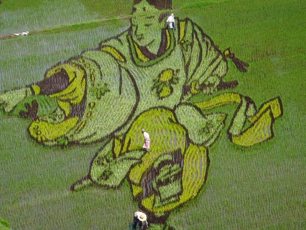 rice_art_2010_5