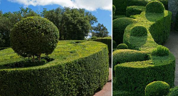 Gardens-of-Marqueyssac-Perigord-2 (5)