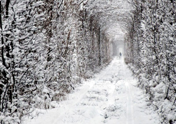 tunnel-of-love-winter