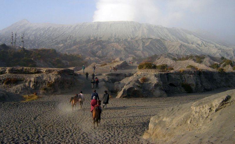 bromo tengger semeru, indonesia hiking horses