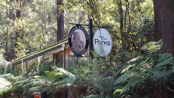 William Ricketts Sanctuary in the Dandenong National Park, Australia 4