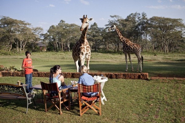 Giraffe Manor in Nairobi Kenya outside
