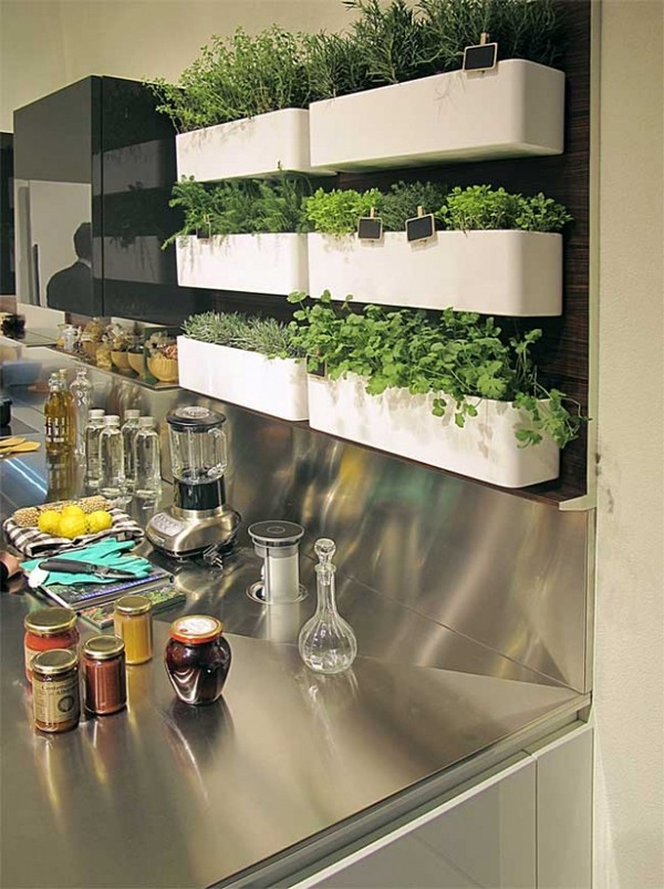 vertical herb garden in your kitchen