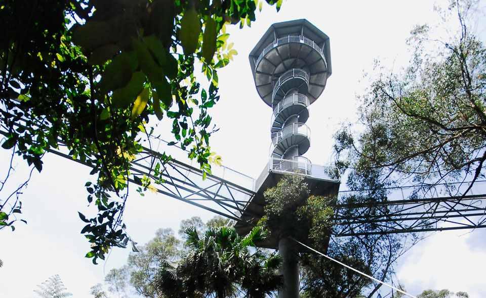 Illawarra FlyTower