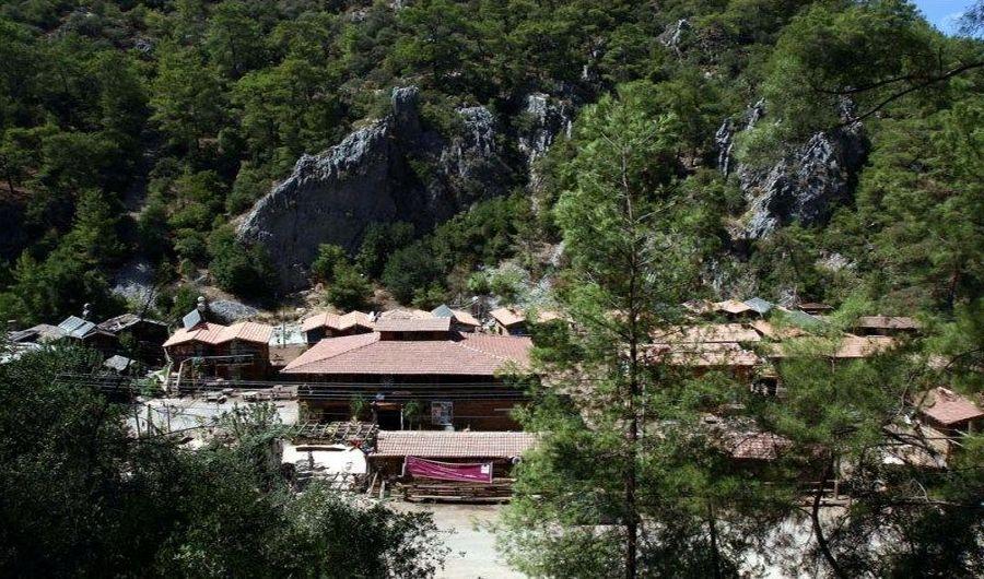 Kadir's Tree House, Turkey (8)