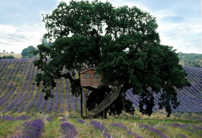 la piantata tree house, Italy