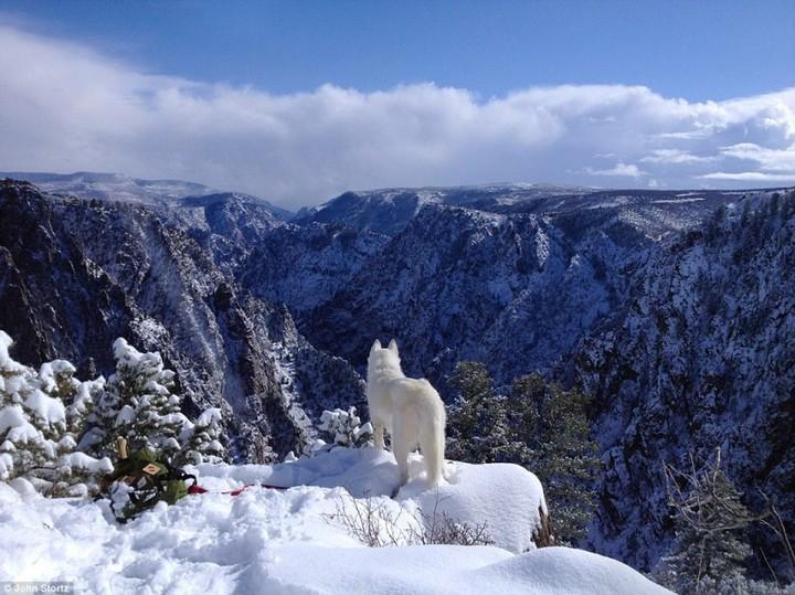 Black Canyon, NV