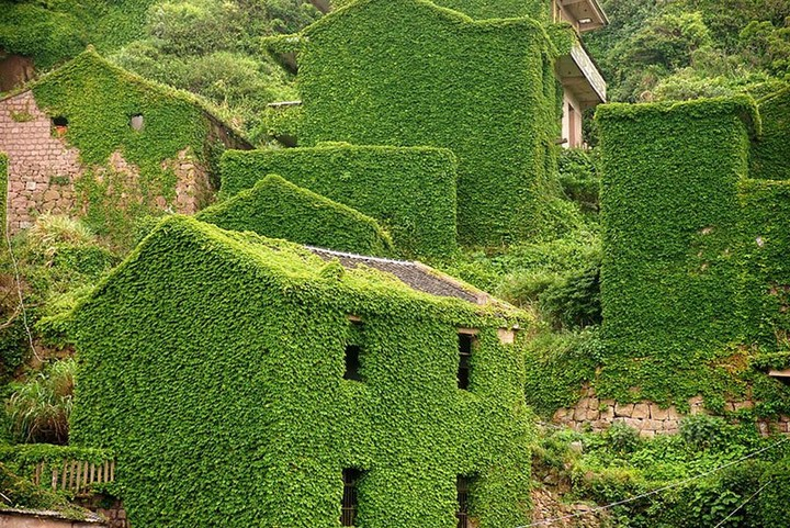 abandoned-village-in-chia-overtaken-by-nature-3