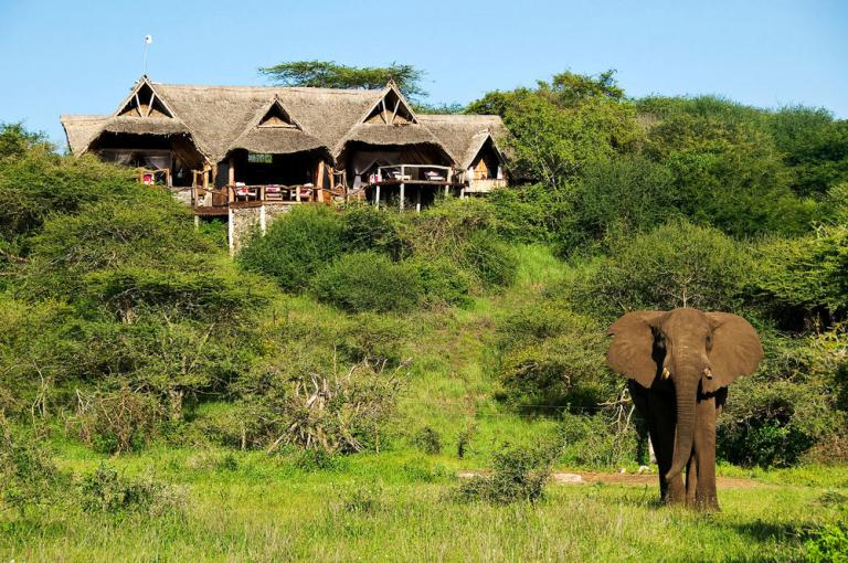 Donyo Lodge, Africa tourism
