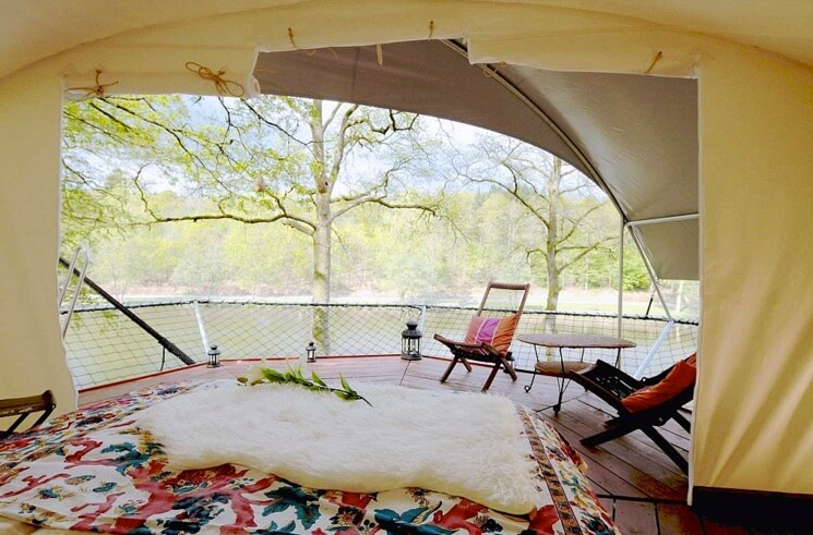 Tree house glamping (5)