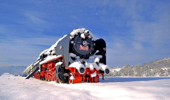 train hotel carpatia express (10)