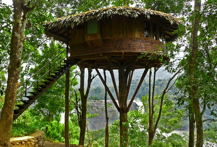Bamboo House Design Home Woods