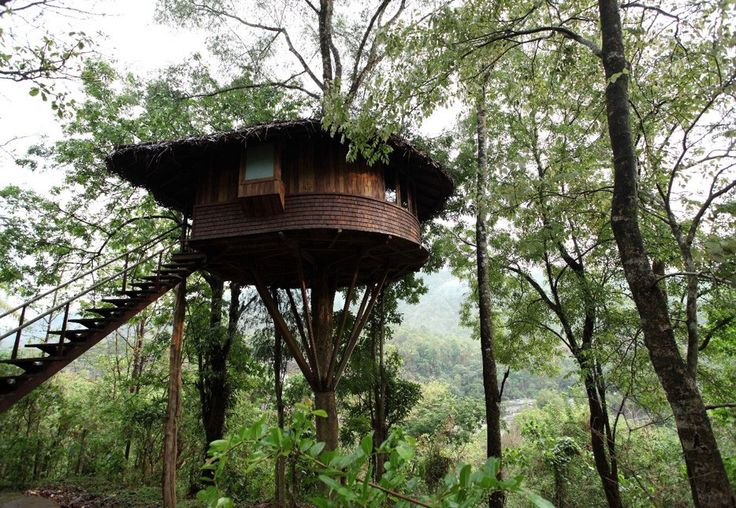 tree house athirapally, india
