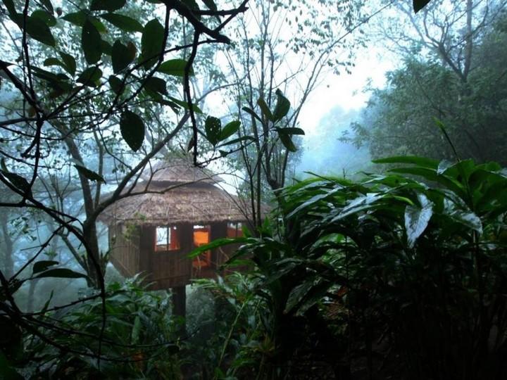 vanya-tree-house-kerala-tehkkady 2