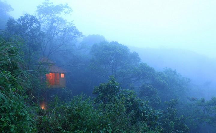 vanya-tree-house-kerala-tehkkady