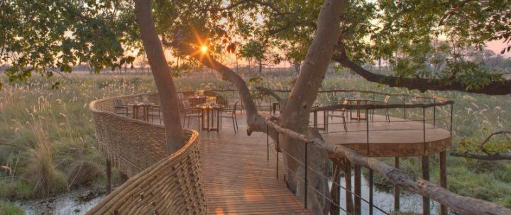 sandibe lodge safari