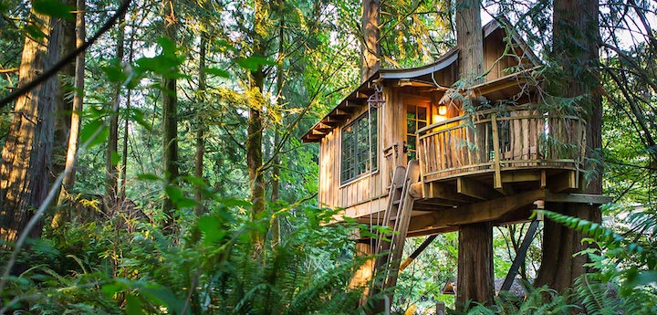 Peaceful Tree Houses You Can
