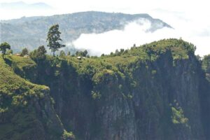 Usambara Mountains Tanzania