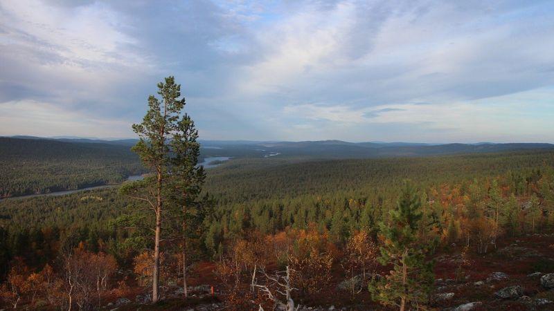 the Fells Finland