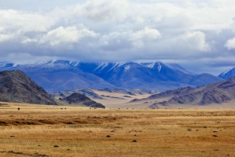 Mongolia drive